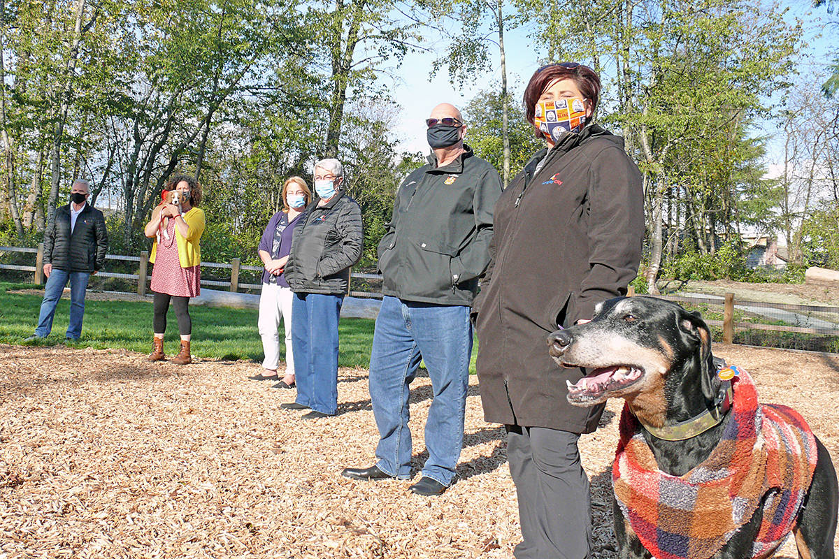 Members of Langley City attended the official opening of the community's fourth off-leash dog park at 5257 197 Street in Langley City on Wednesday, Oct. 14. Left to right: Councillors Paul Albrecht, Rosemary Wallace (with Shiloh), Teri James, Gayle Martin, Rudy Storteboom and mayor Val van den Broek (with Bentley). (Dan Ferguson/Langley Advance Times)