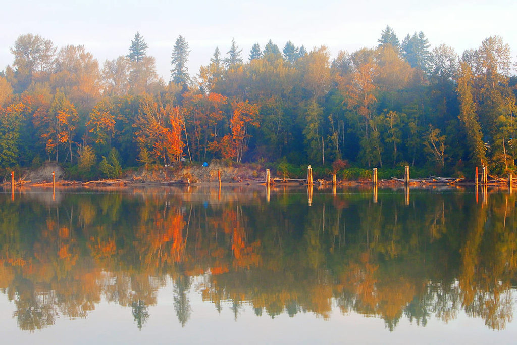 THROUGH YOUR LENS: Micheal McGarry shared a snap shot of autumn along the Fraser River, as he recently saw from the Edgewater Bar area of Derby Reach Regional Park. Send us your photo showing how you view Langley, email to: editor@langleyadvancetimes.com. (Special to Langley Advance Times)