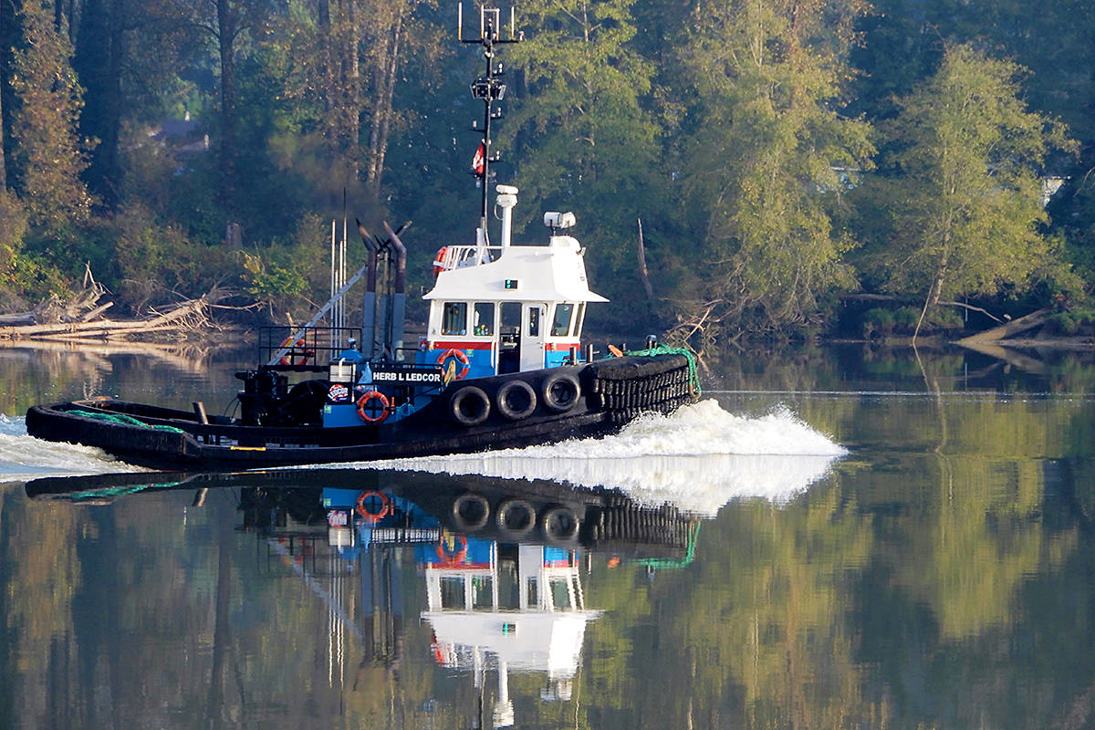 THROUGH YOUR LENS: Micheal McGarry shared a snap shot of autumn, in the form of a tugboat trolling down the Fraser River, as he recently saw from the Edgewater Bar area of Derby Reach Regional Park. Send us your photo showing how you view Langley, email to: editor@langleyadvancetimes.com. (Special to Langley Advance Times)