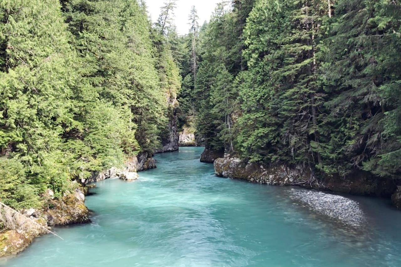 """The Blue Creek restoration in British Columbia is shown in this undated handout photo. Spotty research and inconsistent monitoring has made it impossible to evaluate the health of most Canadian watersheds, a new study has found. """"It's still largely unknown,"""" said Elizabeth Hendricks of the World Wildlife Fund, which has just released its second evaluation of the condition of Canada's freshwater environments. (WWF Canada, Eden Toth)"""