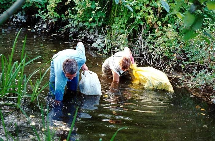 Bertrand Creek Enhancement Society volunteers clean up Aldergrove streams. (Aldergrove Star files)