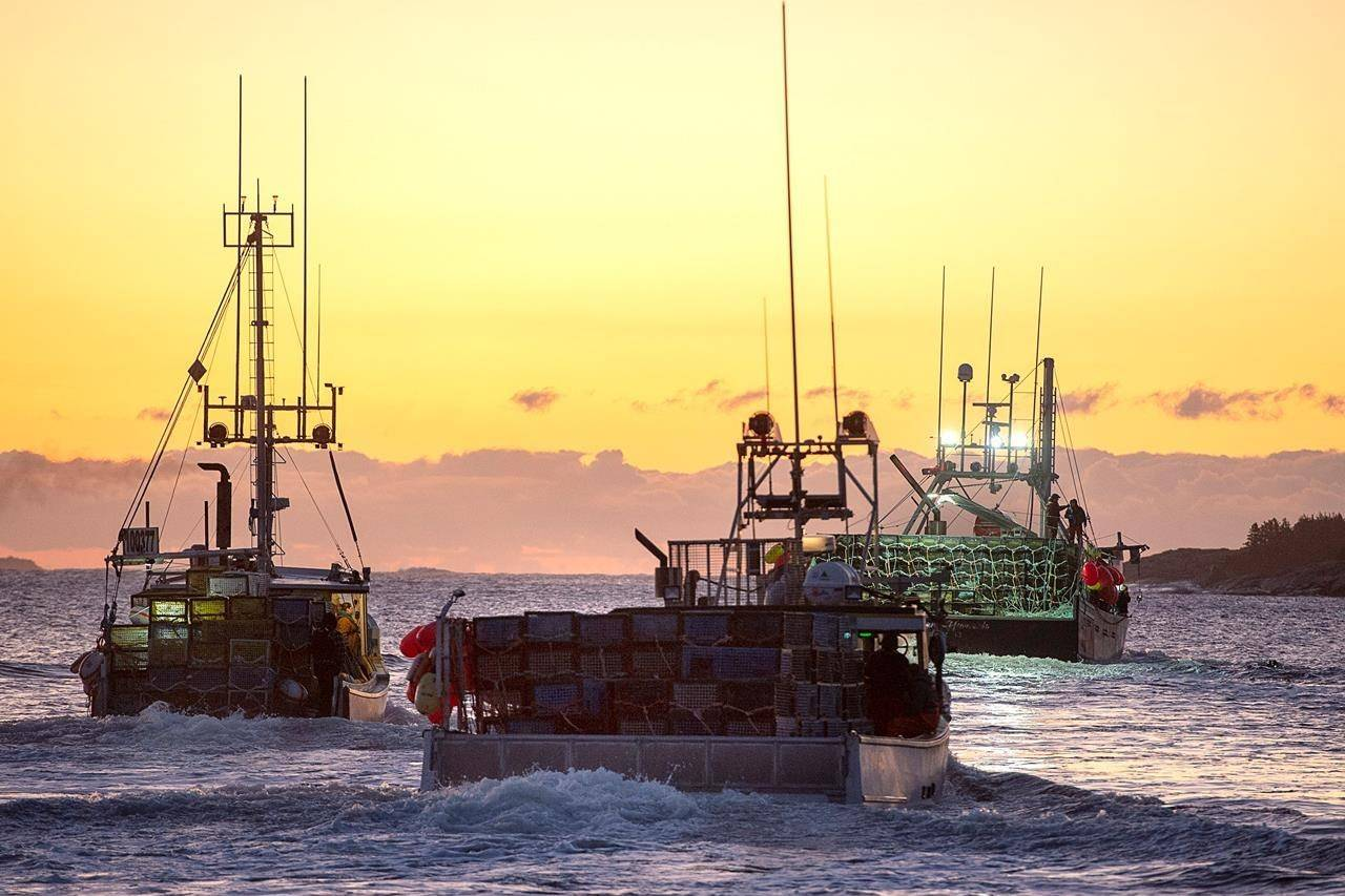 Fishing boats, loaded with traps, head from port as the lobster season on Nova Scotia's South Shore begins, in West Dover, N.S., Tuesday, Nov. 26, 2019. THE CANADIAN PRESS/Andrew Vaughan