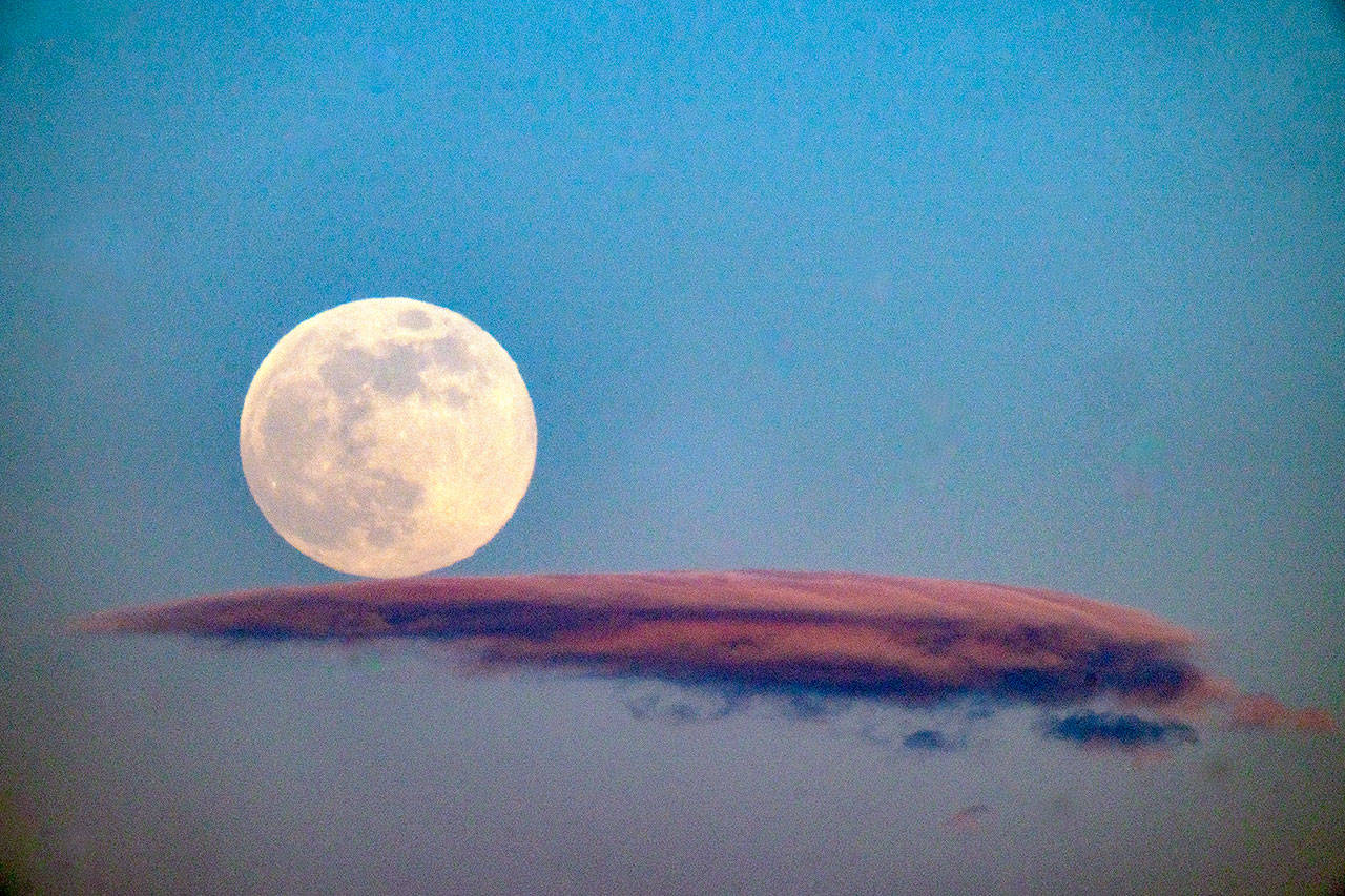 The May full moon, also called the Flower Moon, rests upon a wisp of cloud as it rises above the North Olympic Peninsula. The moon, seen in Port Townsend, will be the last super-moon of 2020. (Steve Mullensky/for Peninsula Daily News)