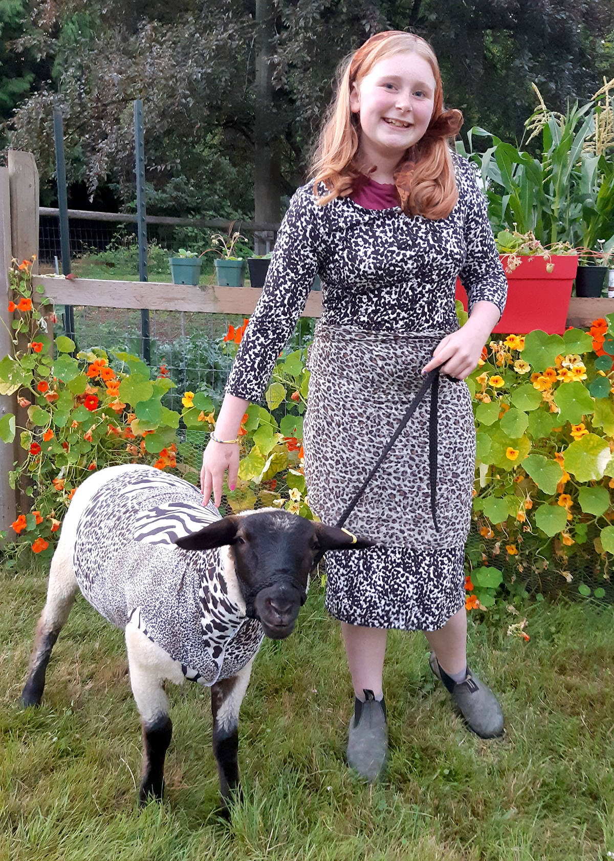 Elly von Euw shows off her sheep, who coordinated outfits for a 4-H costume class. (Glenda Von Euw/Special to the Aldergrove Star)