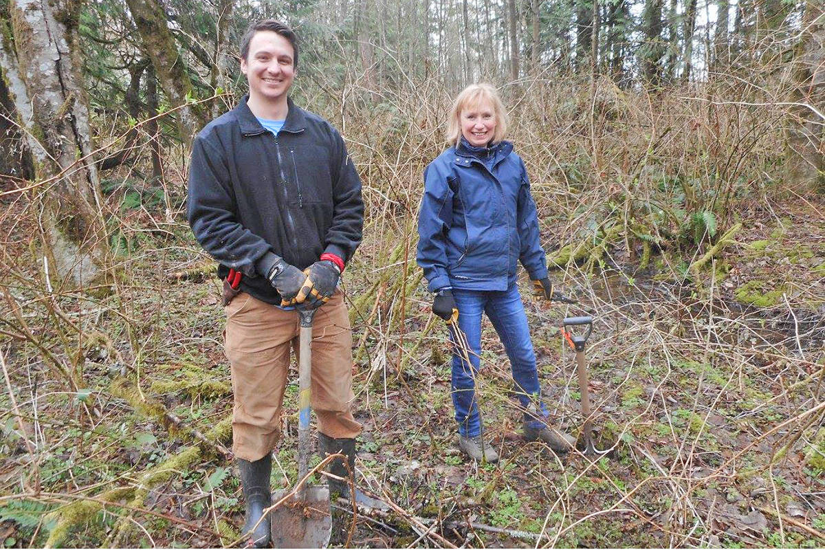 Volunteers at work in 2018 pulling out blackberries in the West Creek Wetlands. A war against invasive blackberries in north east Langley is now in it's sixth year (File)