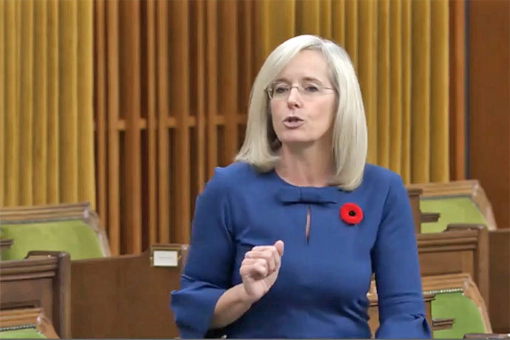 Cloverdale – Langley City Conservative MP Tamara Jansen speaks in the House of Commons on Tuesday, Nov. 3, 2020. to support a proposal to halt audits of small businesses who received federal pandemic relief funds. (video image)
