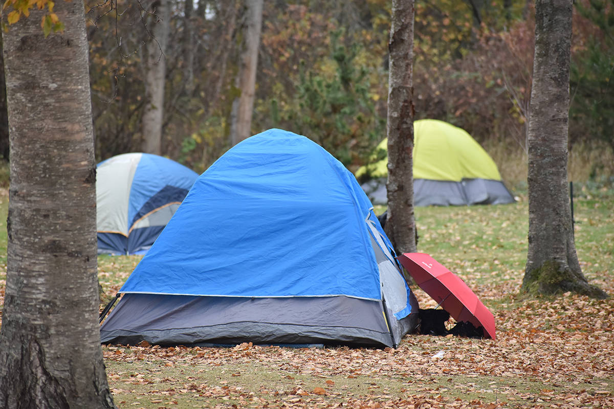 More than a dozen tents were pitched in Peace Arch Park Monday, however, residents in the area said up to 85 were spotted in the park on Sunday. (Aaron Hinks photo)