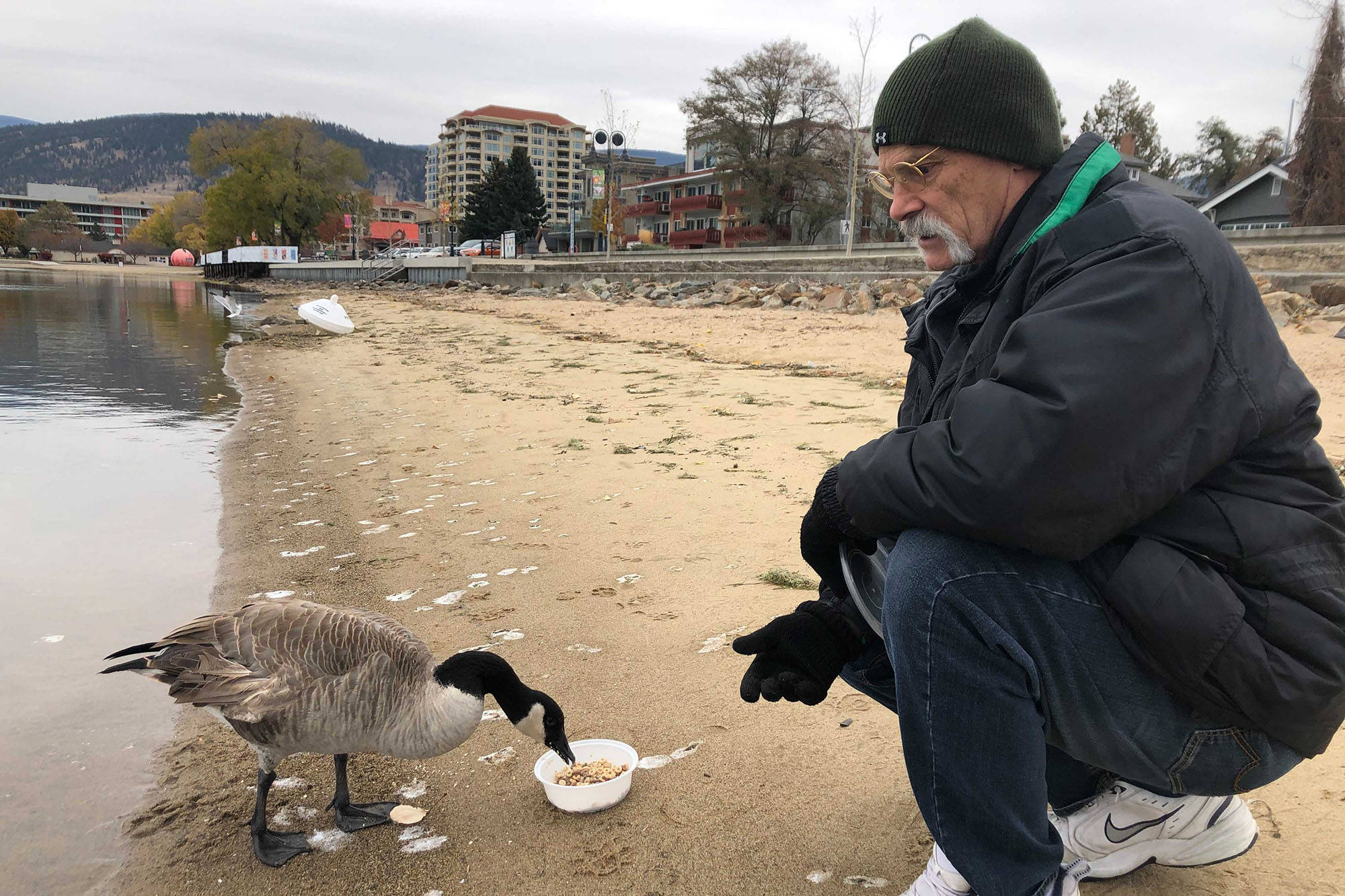 Dave Choukalos visits with Kevin, the broken winged Canada goose, a few times a week. Dave's worried Kevin won't make it through winter. (Monique Tamminga - Western News)