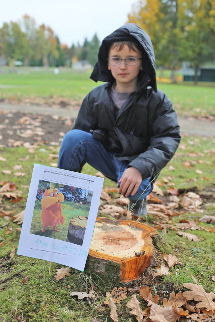 Alketa Wollf said her young brother was determined to take action when cherry trees were chopped down in City Park. (Wollf photo/Special to the Langley Advance Times)