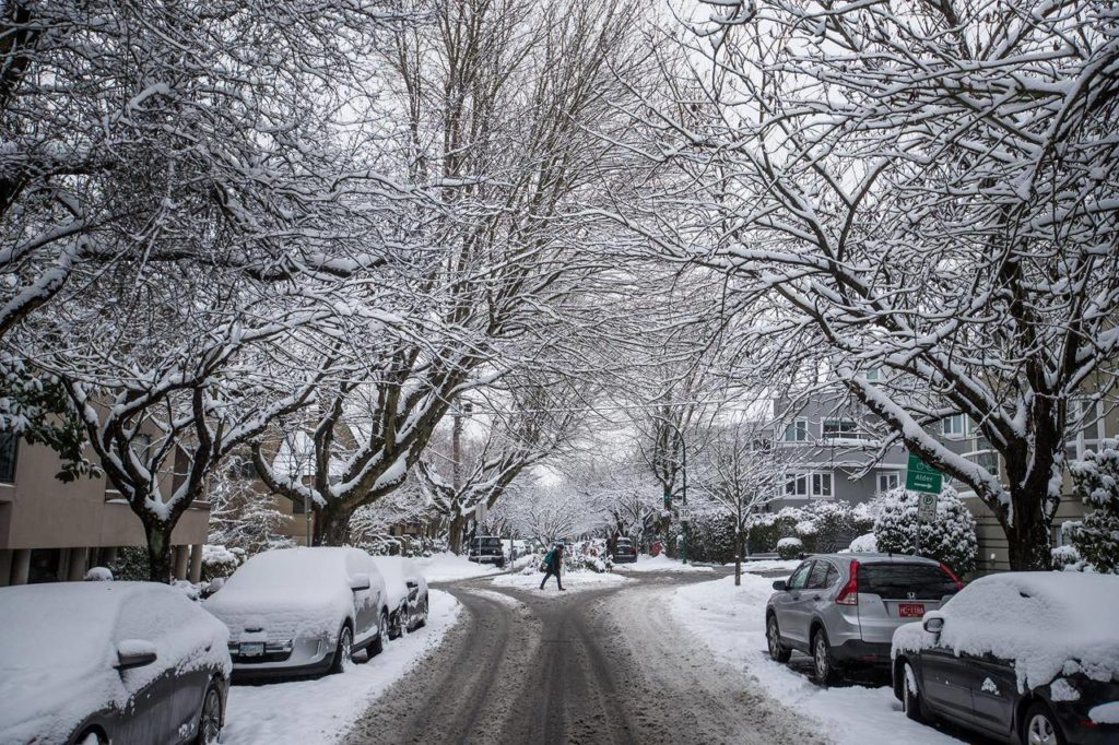 Snow clings to tree branches as a woman crosses a street in Vancouver, on Tuesday, February 12, 2019. British Columbia's electrical supplier says homeowners are not ready for the upcoming winter storm season even though many households report they weathered COVID-19-related closures and shortages earlier this year. THE CANADIAN PRESS/Darryl Dyck
