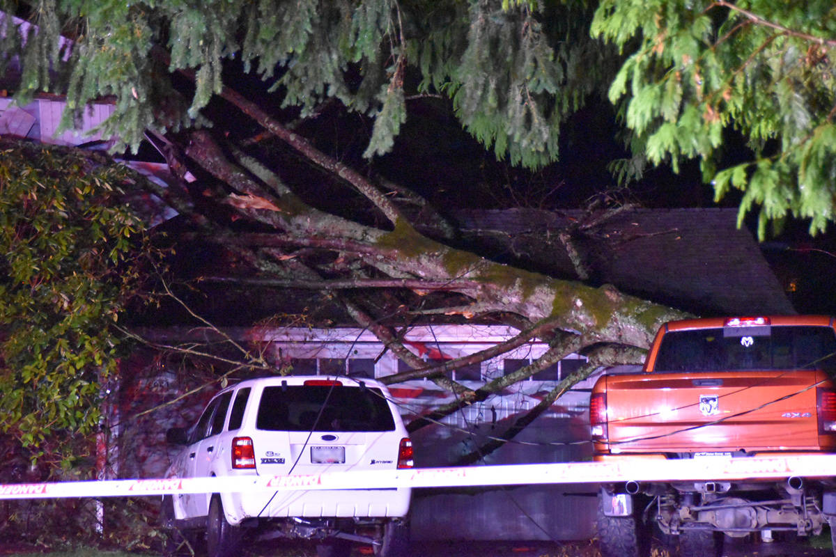 Langley City fire crews were called to the 4900-block of 202A Street for a report of a tree fallen on a house around 8 p.m. Thursday, Nov. 19, 2020. (Curtis Kreklau/Special to Langley Advance Times)