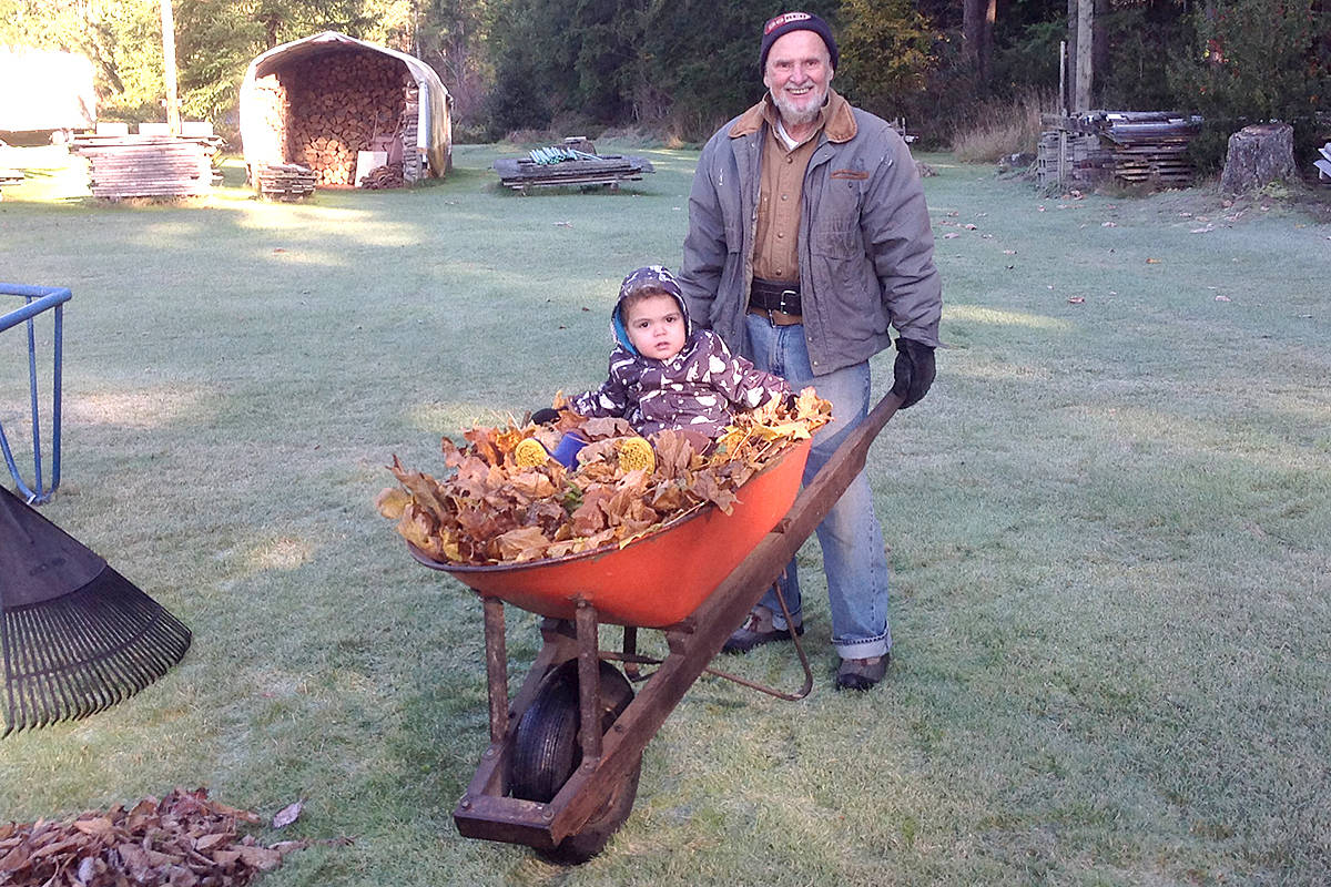 Two-year-old Otis loves helping out around his grandparent's acreage in Fernridge. He especially enjoys helping pick up and transport the leaves that grandpa Roland Seguin, 80, and grandma Lorraine collect – wheelbarrow rides being the highlight. (Special to Langley Advance Times)