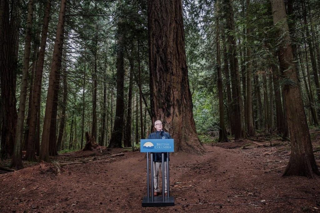 A big job: Former forests minister Doug Donaldson stands before a 500-year-old Douglas fir in Saanich to announce preservation of some of B.C.'s oldest trees, July 2019. (B.C. government)