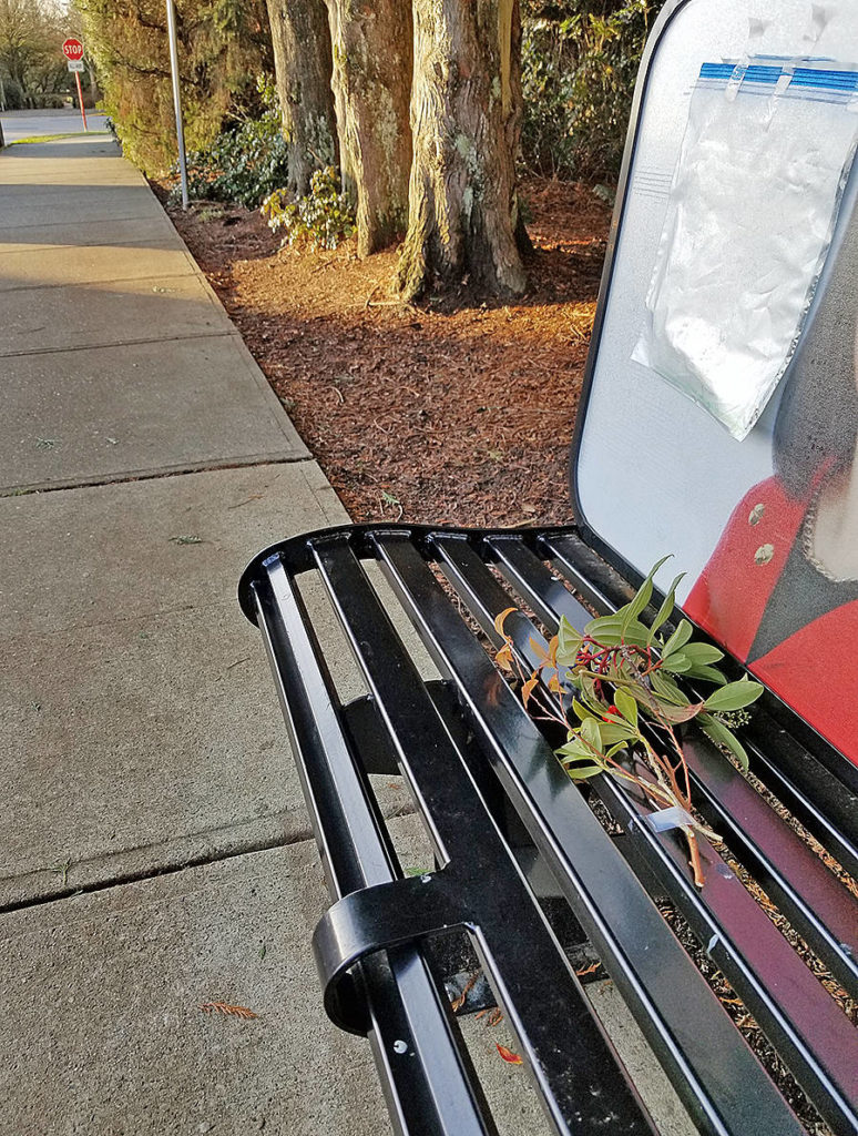 A memorial note and flowers were left for a cyclist who died from a medical emergency near the bus stop at 206 Street and 66 Avenue on Friday, Nov. 27, 2020 (Dan Ferguson/Langley Advance Times)
