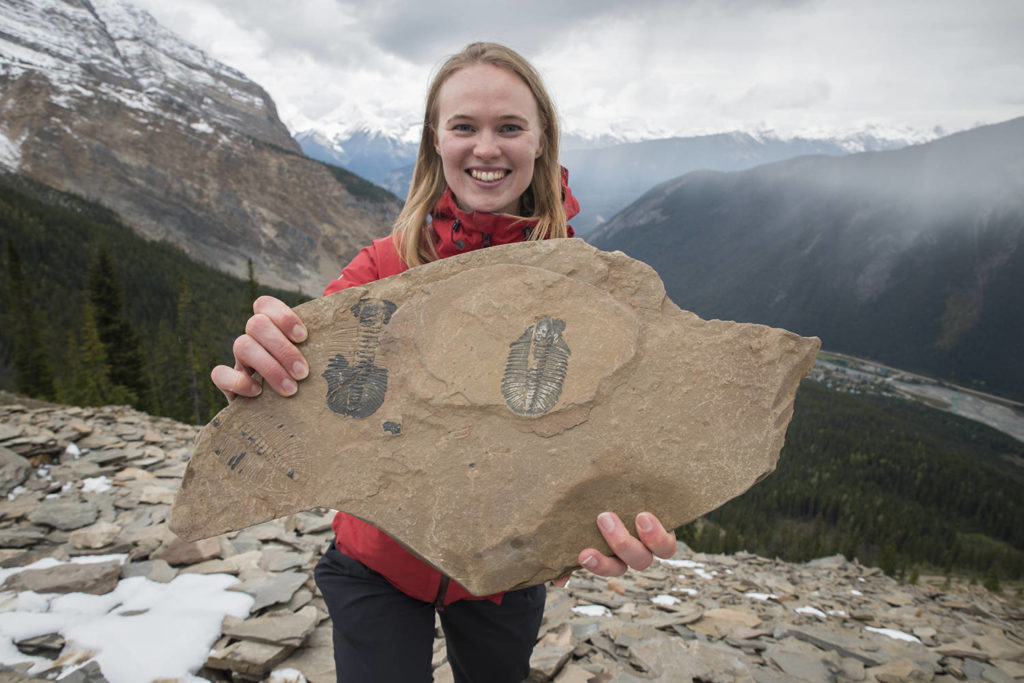 Fossil finds at Mt. Stephen. Sarah Fuller/Parks Canada photo.