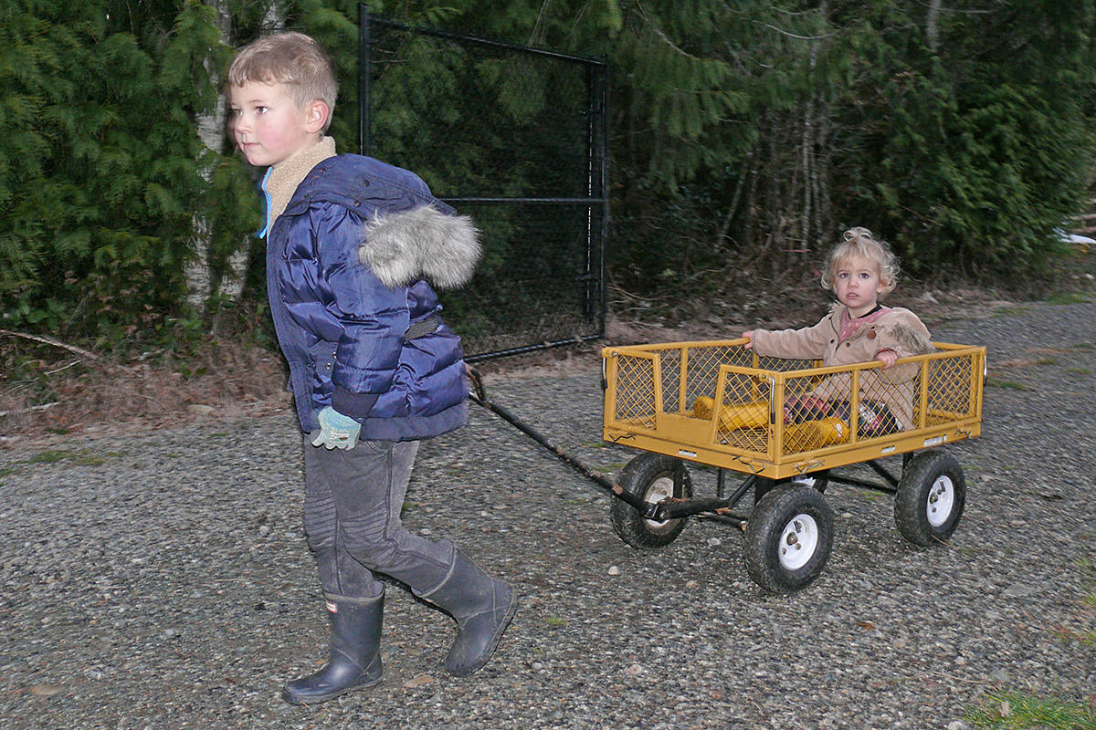 Luka Vaantstra, 5, from Murrayville, used a wagon to pull sister Everly, 1 at the Tannenbaum Tree Farm at 5398 252 St in Aldergrove on Sunday, Nov. 29, 2020 (Dan Ferguson/Langley Advance Times)