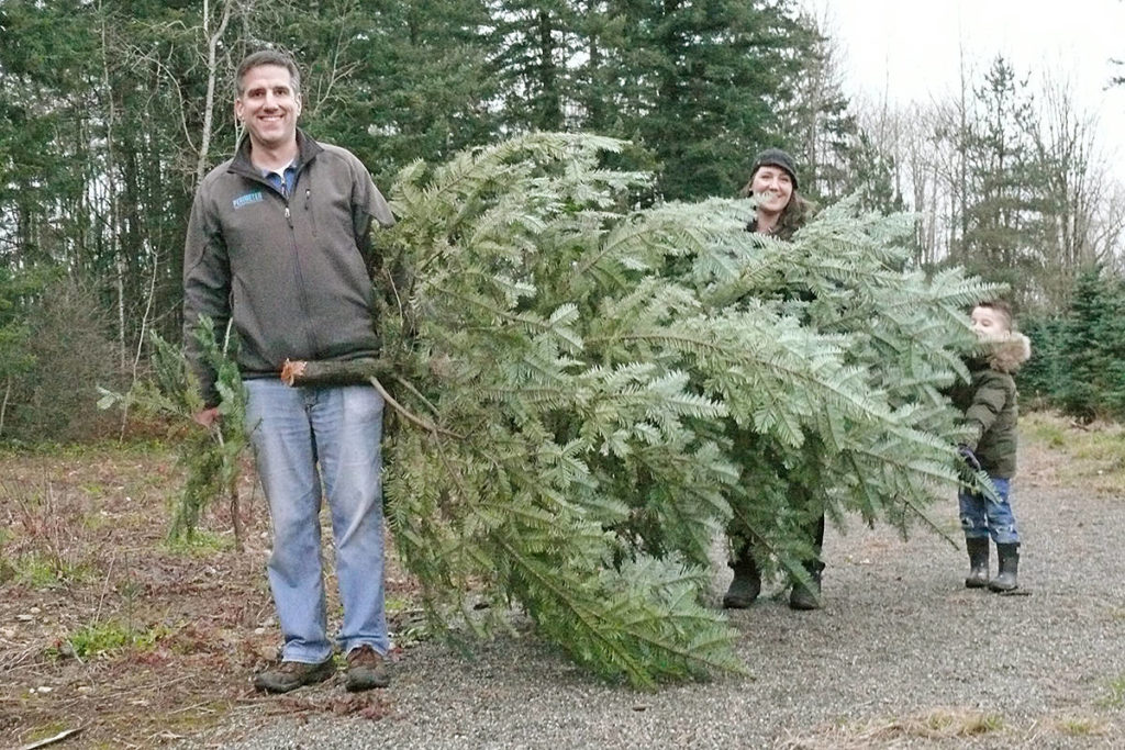 A family emerged with a purchase at the Tannenbaum Tree Farm at 5398 252 St in Aldergrove on Sunday, Nov. 29, 2020 (Dan Ferguson/Langley Advance Times)