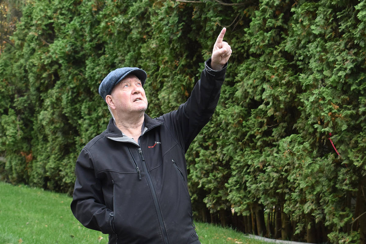 Elgin Wynd resident Ian Tyzzer says encroaching development is threatening the home and breeding ground of an endangered pigeon species. (Alex Browne photo)