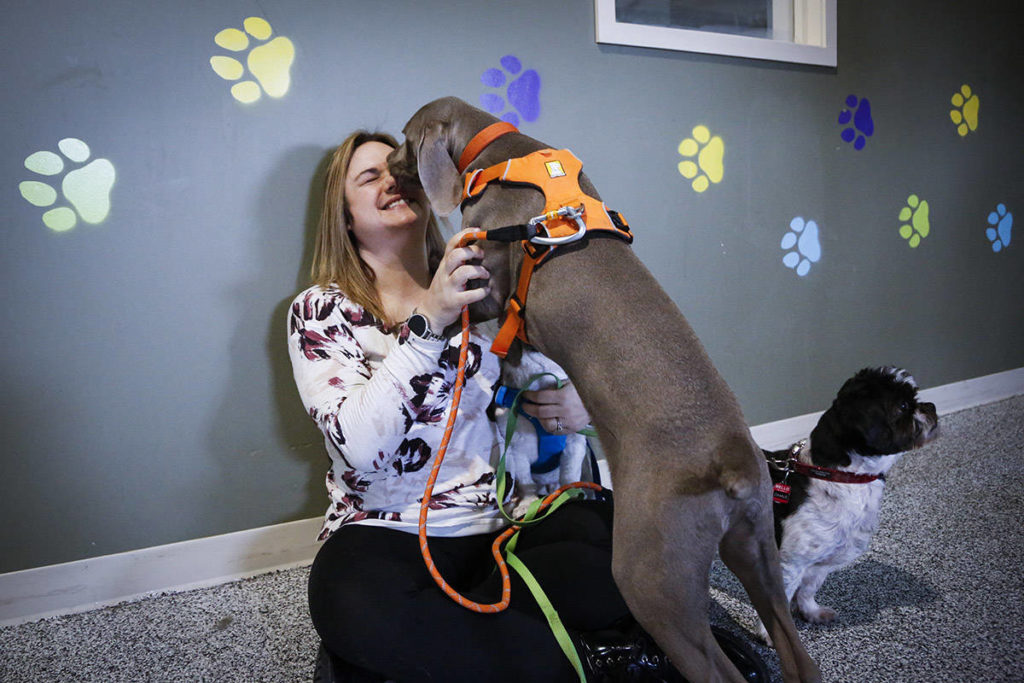 Melissa David, of Parachutes for Pets and her dogs Hudson and Charlie are trying to raise money for a homeless shelter that will allow pets and are seen in Calgary, Alta., Thursday, Feb. 6, 2020.THE CANADIAN PRESS/Jeff McIntosh