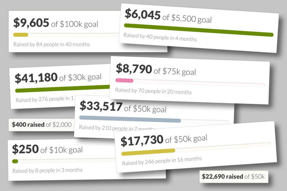 Measures of success from a selection of GoFundMe campaigns by or for people in Snohomish County.