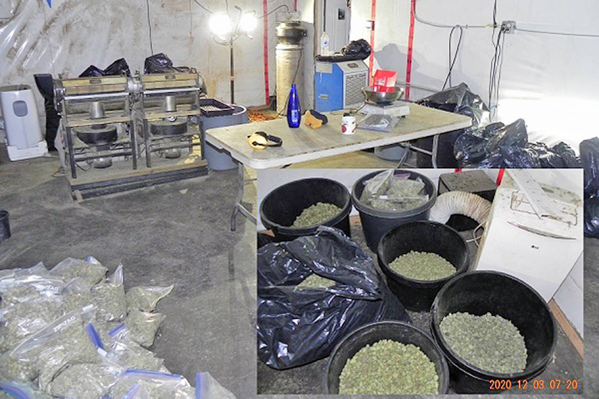 Police evidence photos from Dec. 2, raid on Langley location show machinery used for separating cannabis leaves and buds from stems and dried cannabis in clear plastic self-sealing packing bags (RCMP)