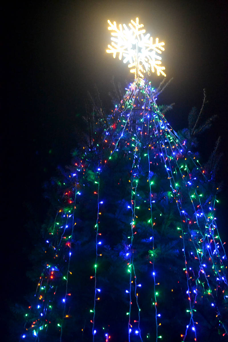 A 27-foot Christmas tree lights up the vacant lot where the Alder Inn used to stand. (Ryan Uytdewilligen/Aldergrove Star)