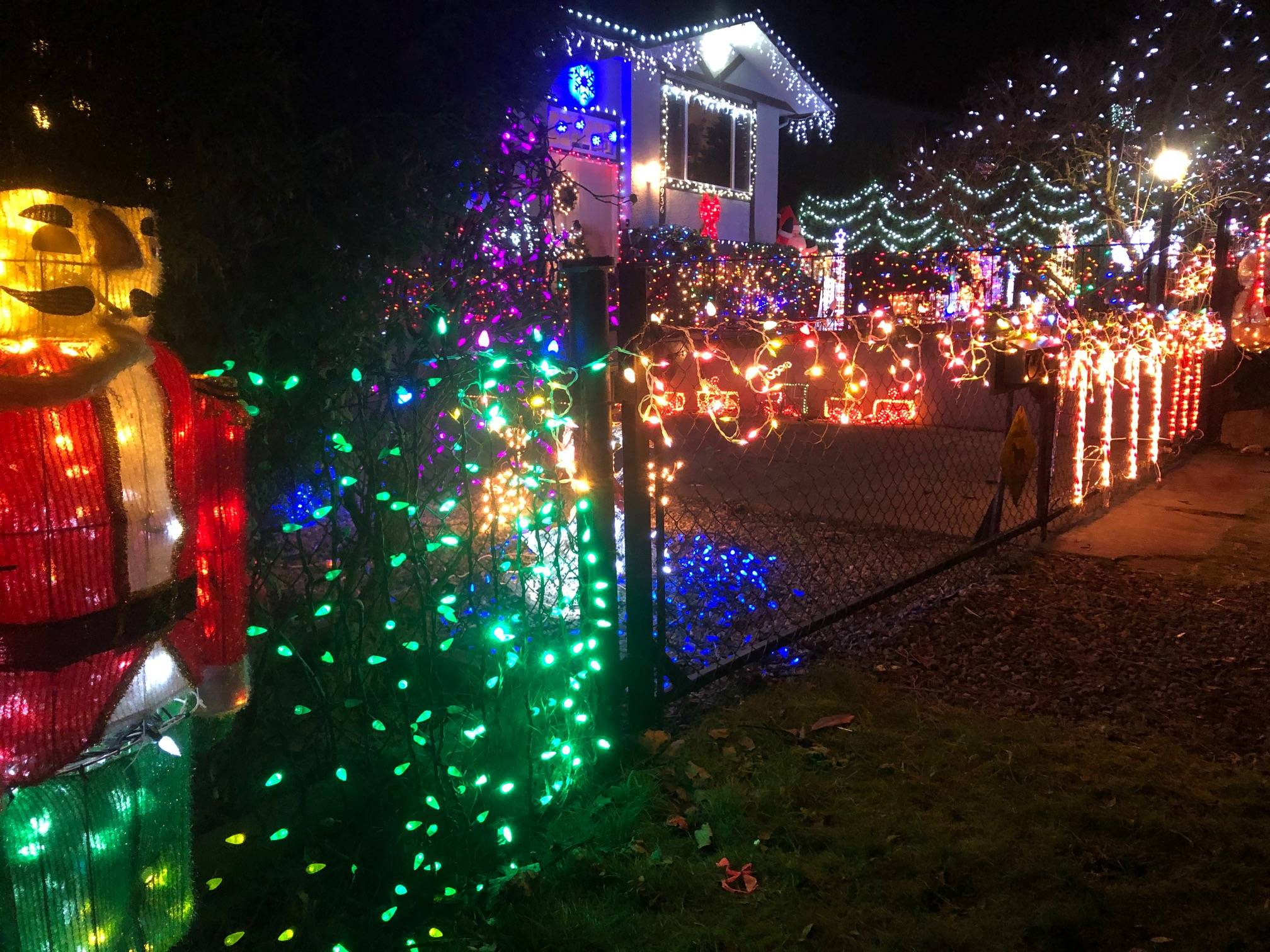 The Wejr family went all out for the holiday season and invite everyone to come see the decor at 26936 28A Ave. (Chris Wejr/Special to the Aldergrove Star)