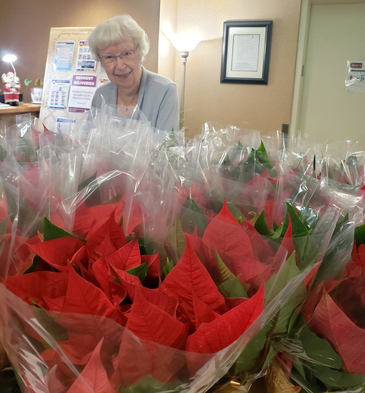 Poinsettias were delivered to the residents of Chartwell Langley Gardens. (Jessie Vander Eyk/Special to the Langley Adavnce Times)