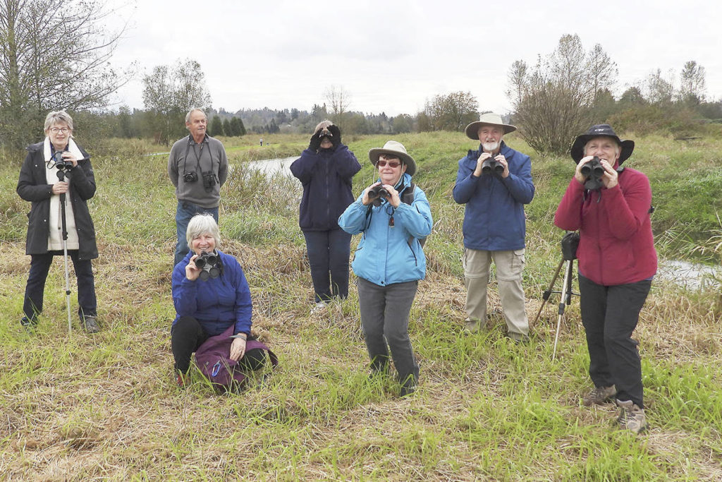 Volunteer citizen citizen scientists will be keeping a careful distance during the 121st annual Audubon bird count in Langley on Dec. 27. (John Gordon/special to Langley Advance Times)