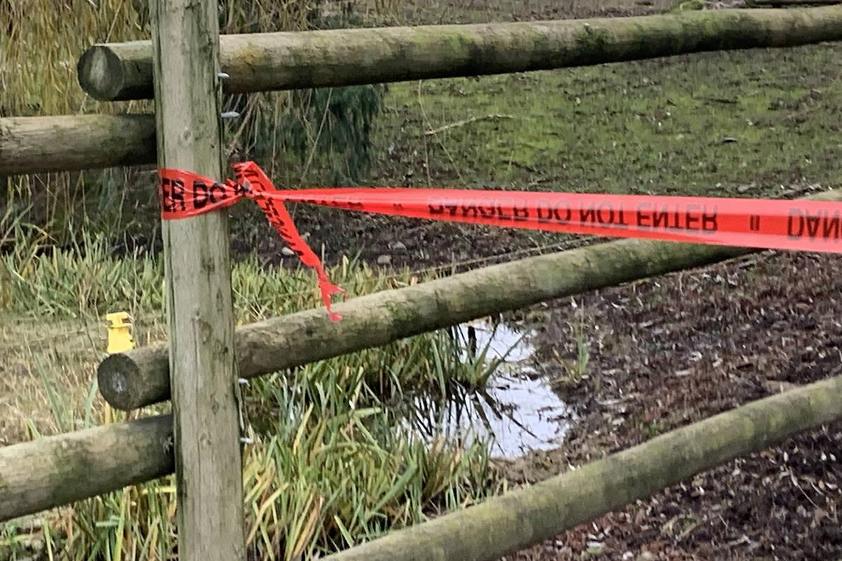 Danger tape blocks off driveways at a mink farm in Chilliwack on Dec. 7, 2020 after an outbreak was declared. (Paul Henderson/ Chilliwack Progress file)