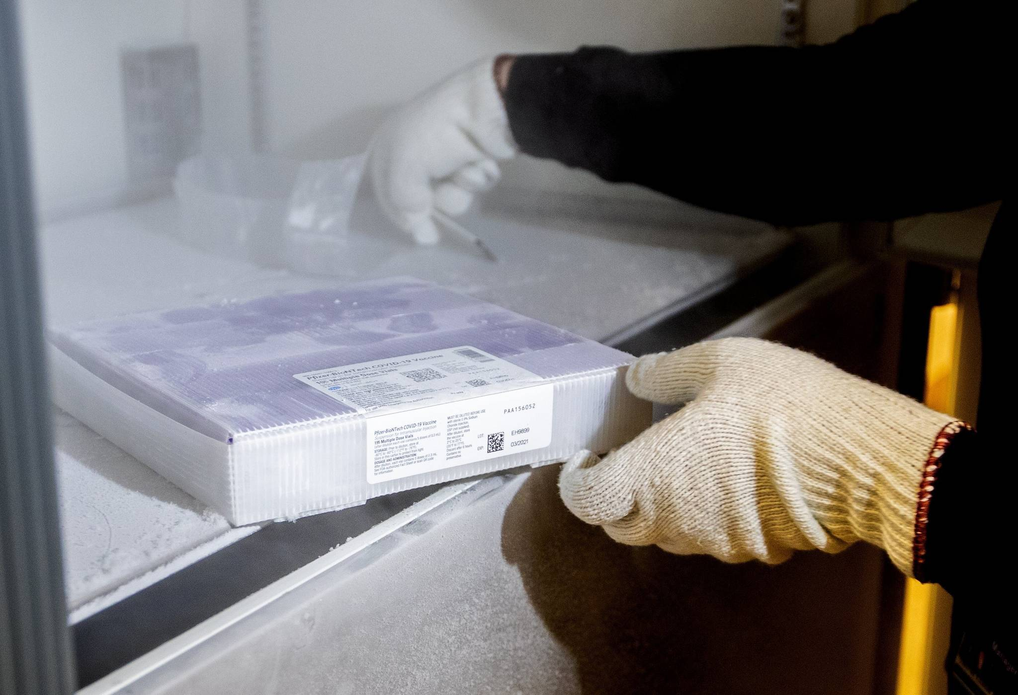 University of Washington Medical Center Pharmacy Manager Christine Meyer puts a tray of doses of the Pfizer-BioNTech COVID-19 vaccine into the deep freeze after the vaccine arrived at the University of Washington Medical Center's Montlake campus Monday, Dec. 14, 2020, in Seattle. (Mike Siegel/The Seattle Times via AP, Pool)