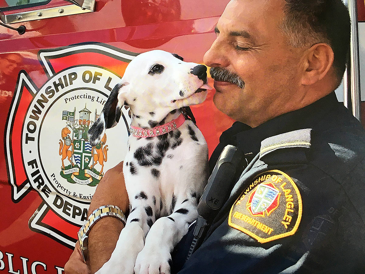 Now retired fire Capt. Gary Proznick received a kiss from a dalmatian puppy during a public education event earlier this year. It seemed a fitting goodbye for the retiring firefighter, the dalmatian being the iconic firehouse dog. He's featured in this year's firefighter fundraising calendar. (Natalie Amoore/Special to Langley Advance Times)