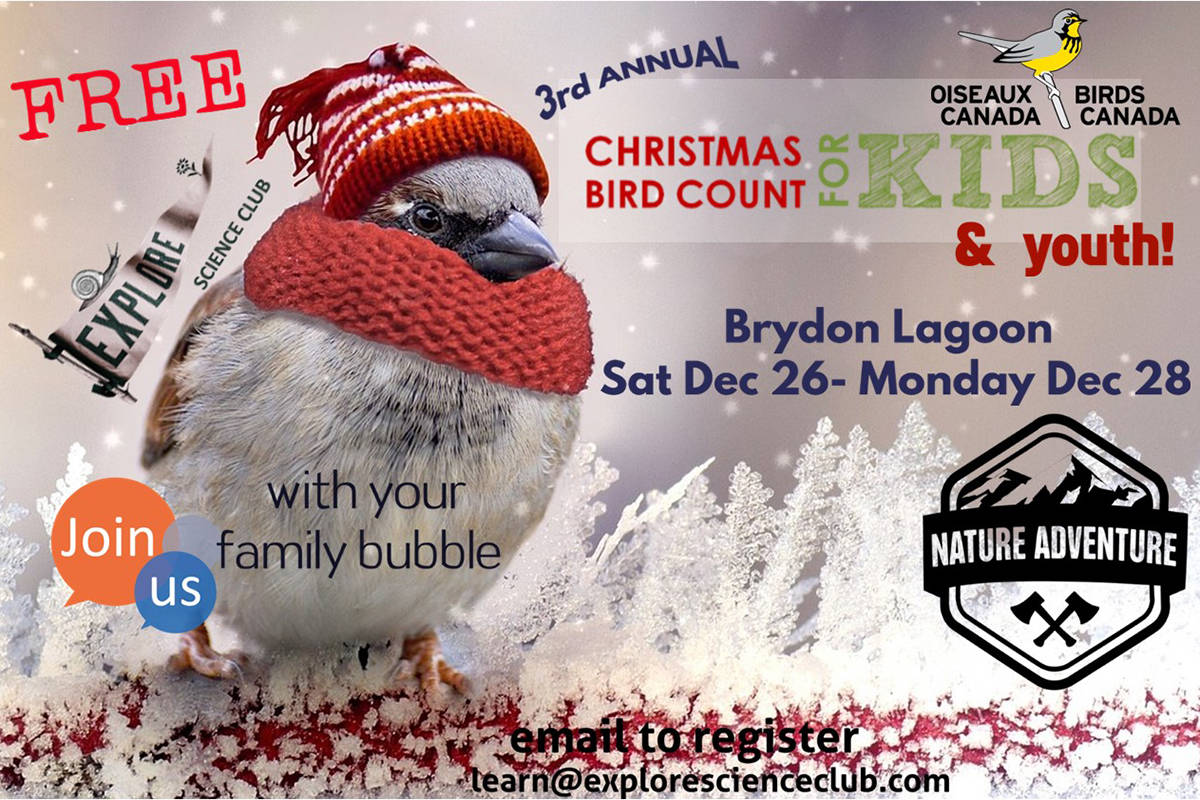 The Explore Science Club has a Christmas Bird Count for Kids and Youth happening Dec. 26 to 28. (Explore Science Club)