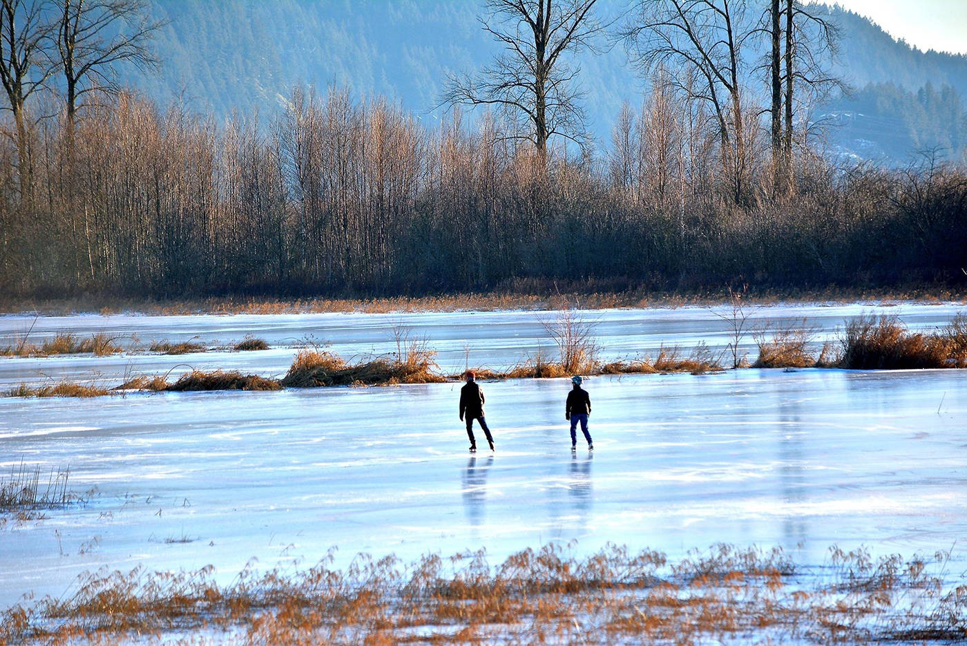 Pitt Lake is an accessible hike for the whole family, and a great place to spot wildlife! (Photo: Liz Boulton)