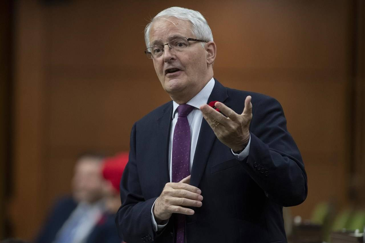 Minister of Transport Marc Garneau responds to a question during Question Period in the House of Commons in Ottawa, Tuesday, Nov. 3, 2020. THE CANADIAN PRESS/Adrian Wyld