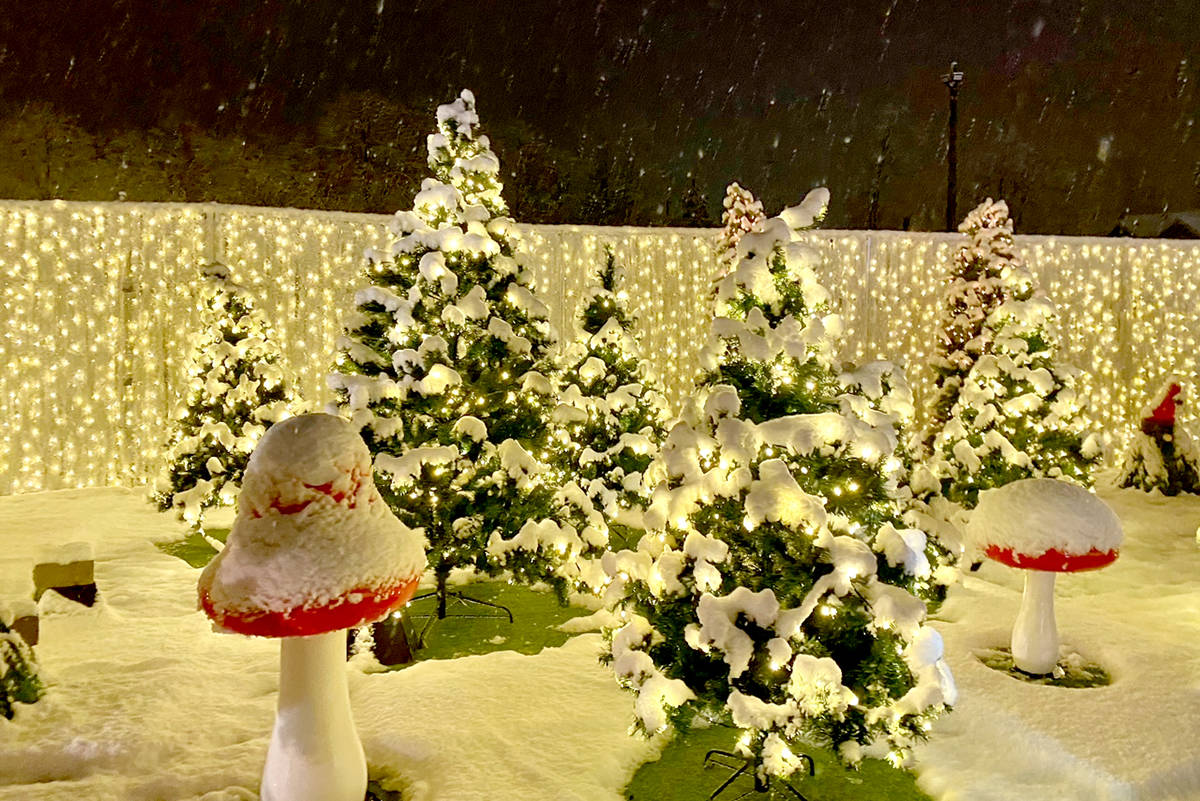 Even with a dump of snow, Glow Gardens' original dates are sold out so another week has been added. (Lisa Farquharson/Black Press Media)