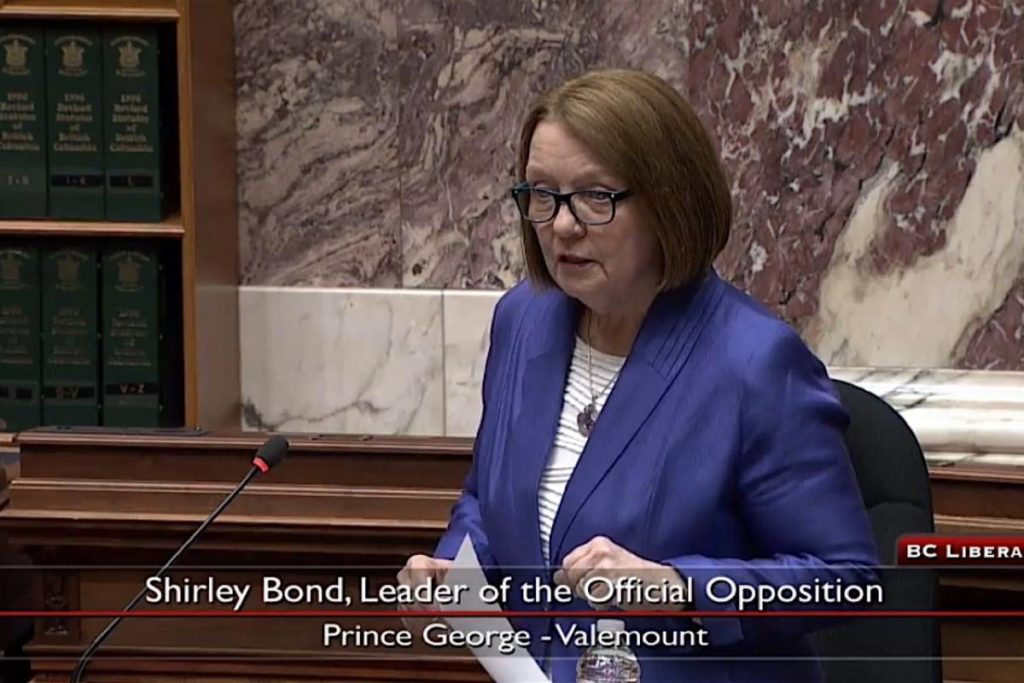 Interim B.C. Liberal leader Shirley Bond leads debate on a bill to delay the provincial budget for a second time, at the B.C. legislature, Dec. 16, 2020. (Hansard TV)