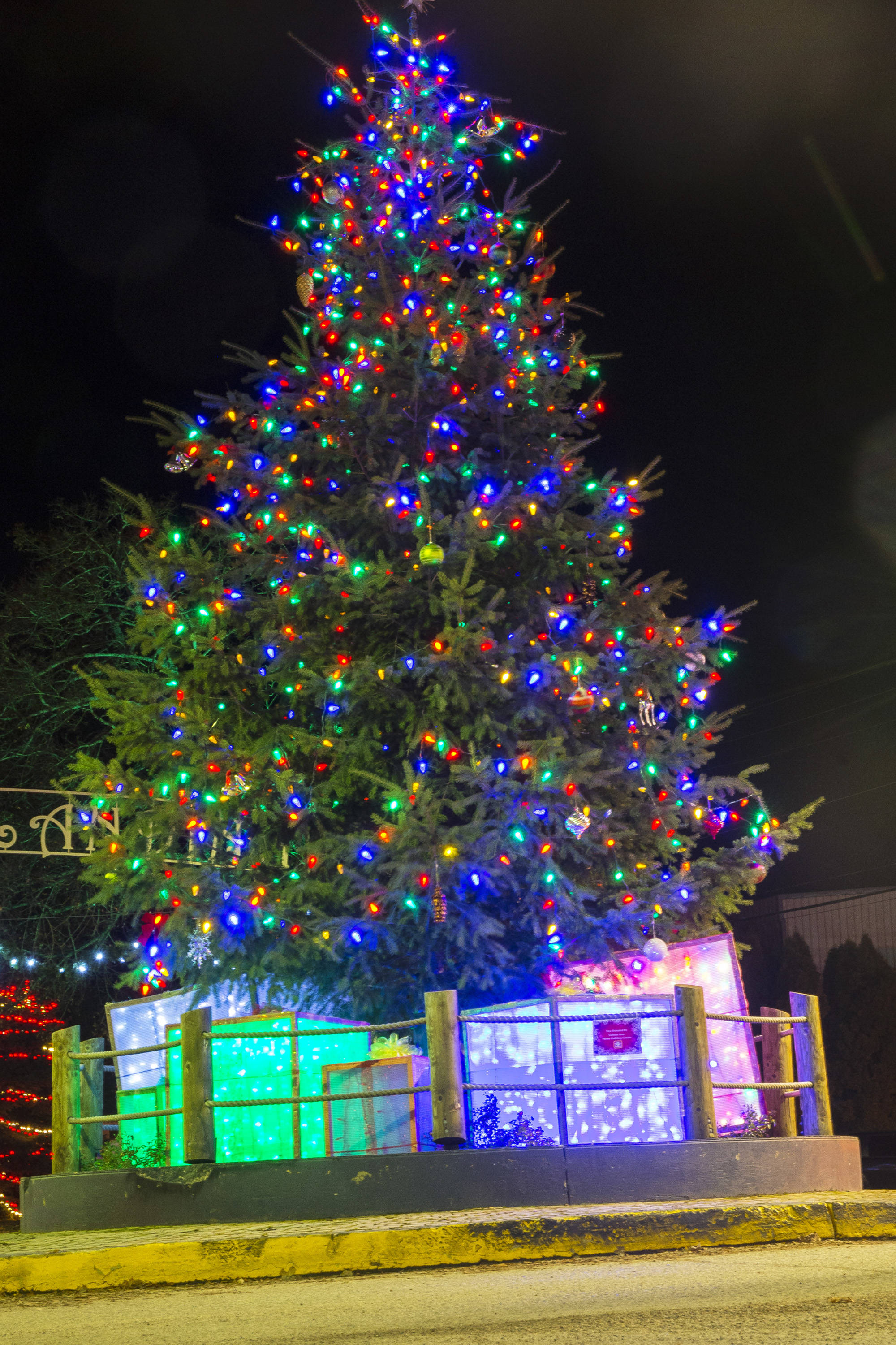 Sicamous pulled out all the stops for the decoration on and around the Christmas tree at the roundabout at the west end of Main Street. How well do you know Christmas traditions? (Jim Elliot/Eagle Valley News)
