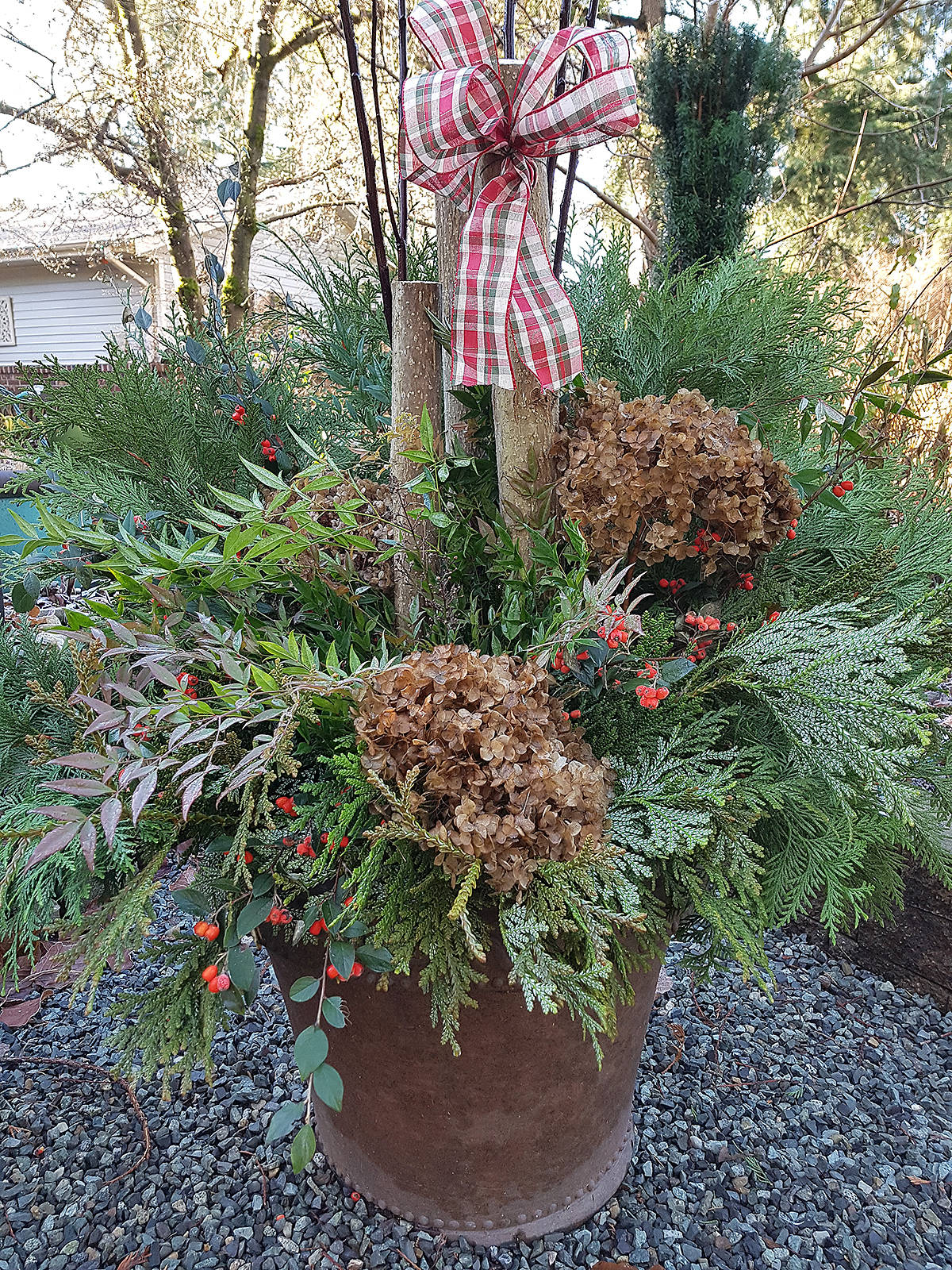 Instead of putting everything into the compost bin, how about turning some of this winter's textured and colourful clippings on display. (Pam Erikson/Special to Black Press Media)