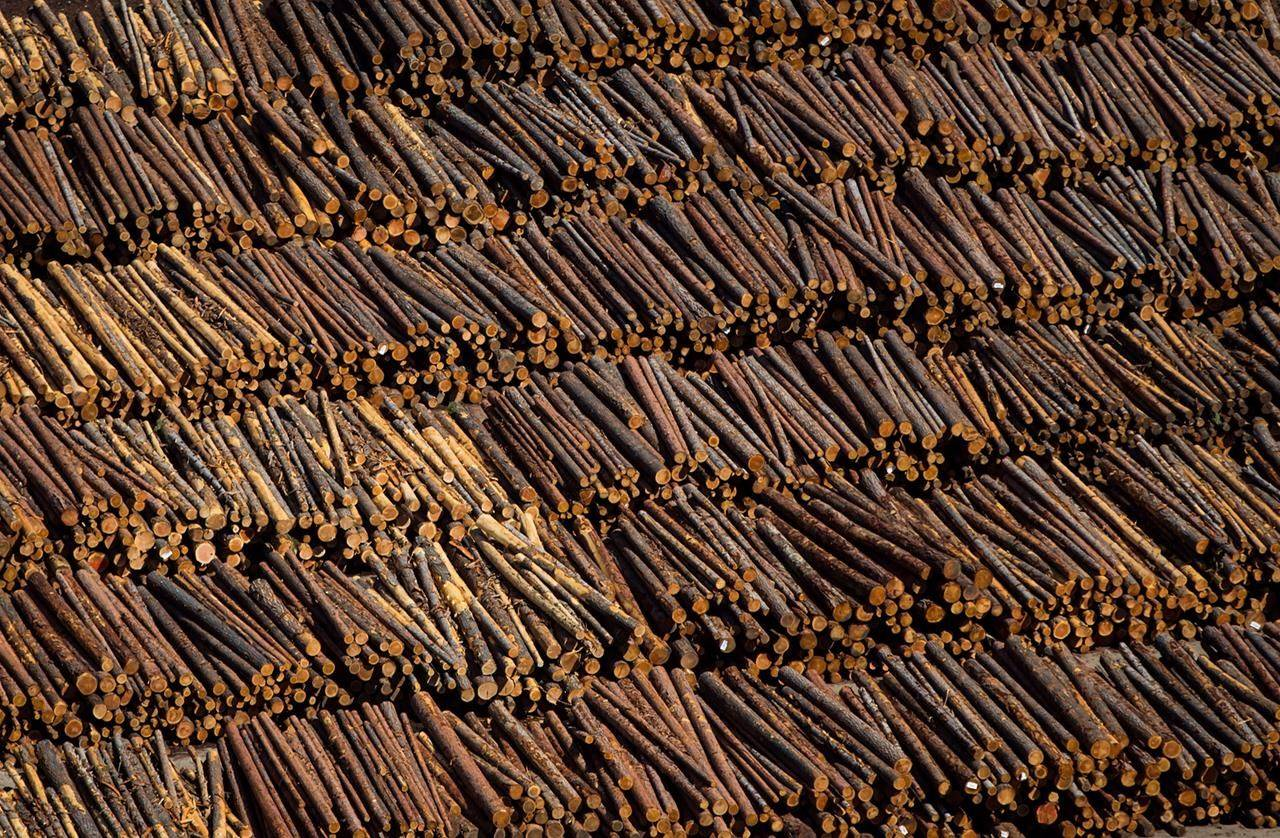 Logs are seen in an aerial view stacked at the Interfor sawmill, in Grand Forks, B.C., Saturday, May 12, 2018. An unexpected rebound in wood product prices this month is boosting profits for Canadian forestry companies but leaving homeowners and buyers with the prospect of higher home and renovation costs in 2021. THE CANADIAN PRESS/Darryl Dyck