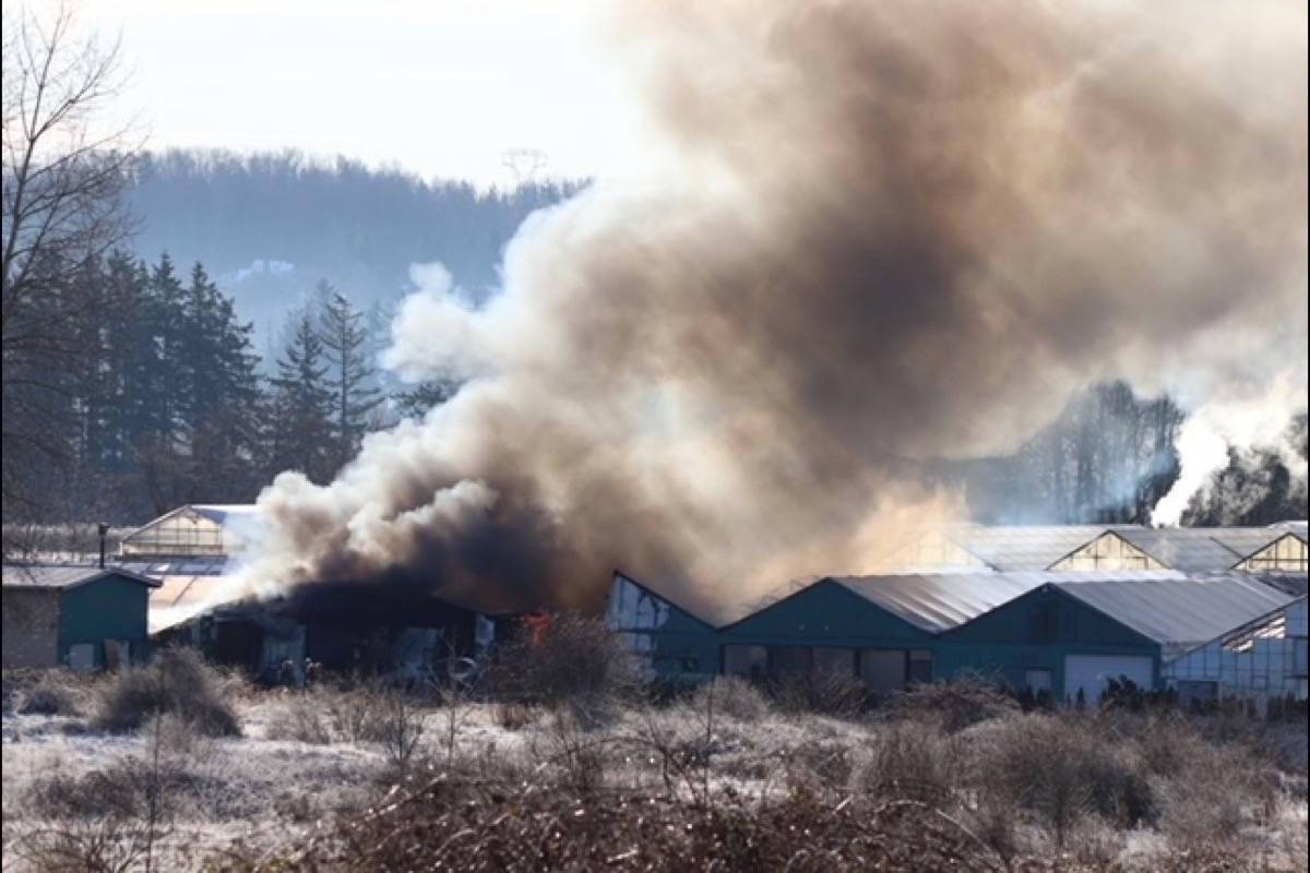 Smoke and flames engulf greenhouse on a rural South Surrey property Thursday (Dec. 24). (Shane MacKichan photo)