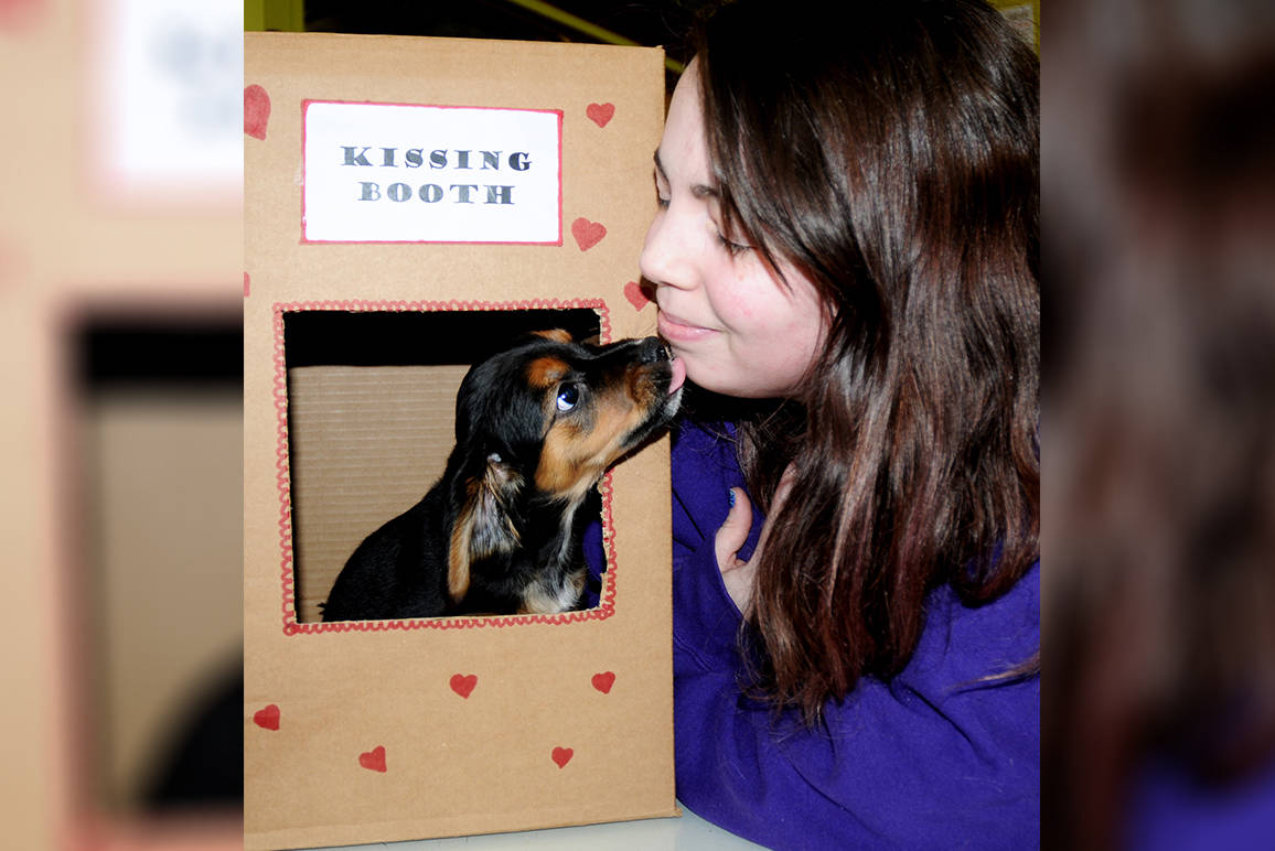 """""""Who doesn't need a little puppy love on Valentine's Day and every day for that matter."""" (Sheri Regnier/Trail Times)"""