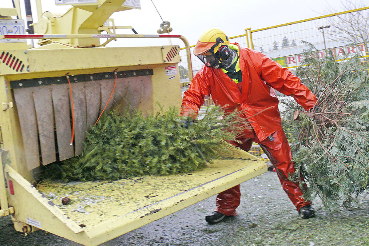 Steve Harvey of Bartlett Tree Experts feeds trees into a chipper on Sunday, Jan. 3, 2021 during the annual Ride 2 Survive fundraiser at Willowbrook Shopping Centre, the seventh year that the company has donated its services.(Dan Ferguson/Langley Advance Times)