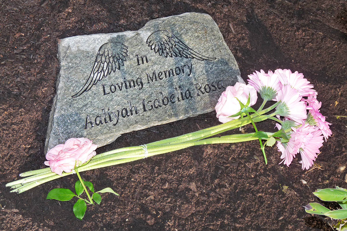 The father of Aaliyah Rosa planted a tree and laid a plaque in her memory in 2018. (Dan Ferguson/Langley Advance Times)
