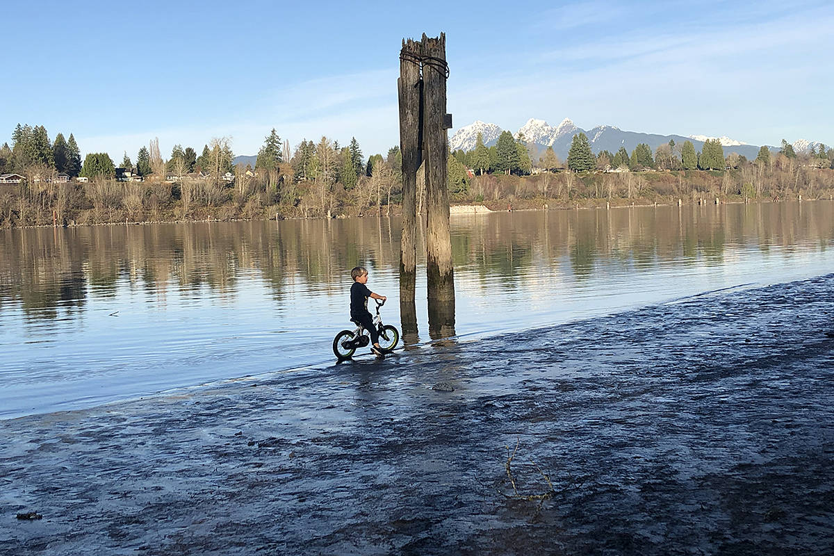 "Langley's Julie Vantol shared this picture of her ""intrepid"" three-year-old son Jonas cycling along the shores fo the Fraser River on a recent sunny winter day. ""Great day for a bike ride along the beach at Derby Reach trailhead, at 208th,"" with the snow covered mountains in the background, she said. (Special to Langley Advance Times)"