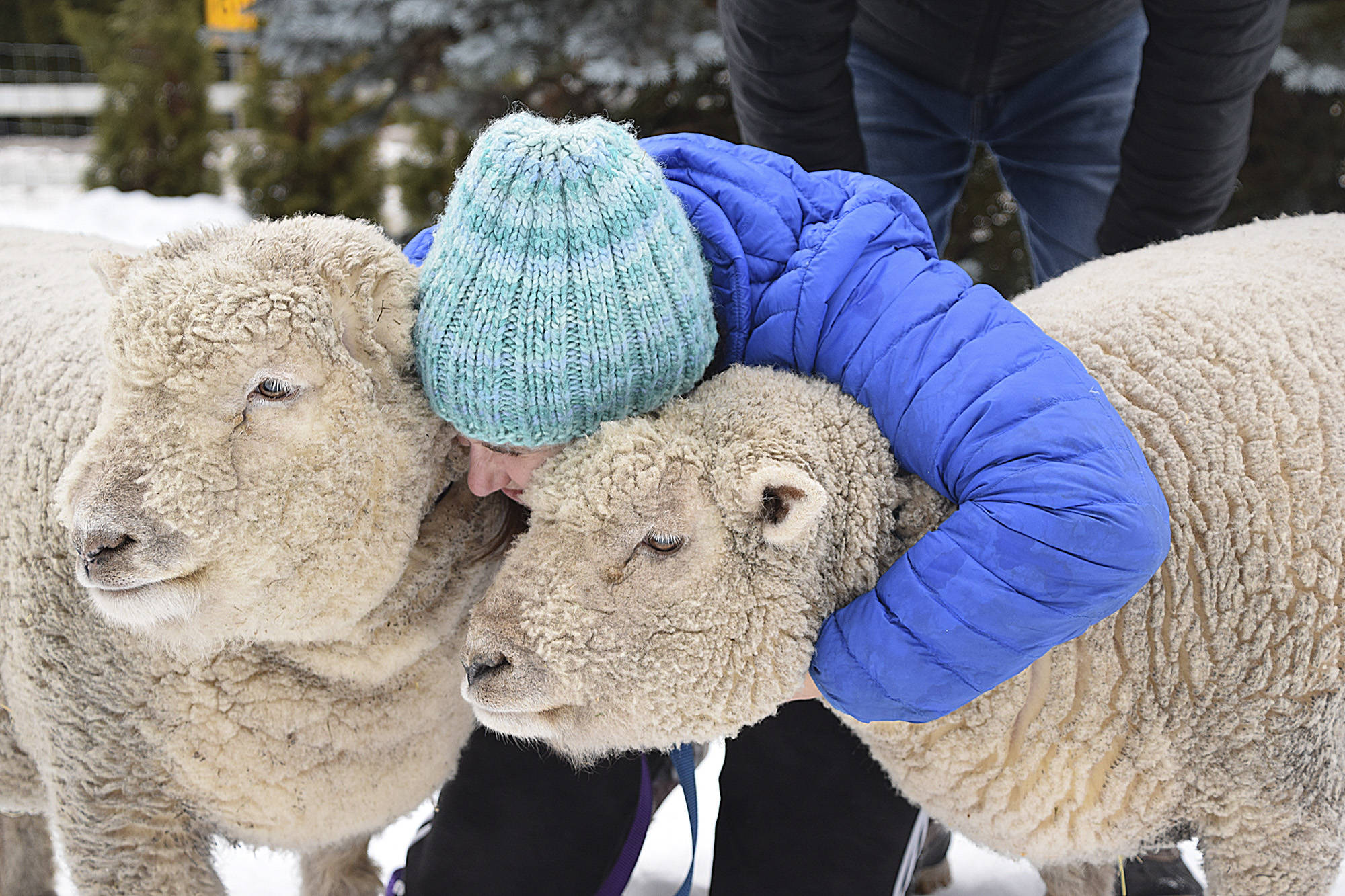 Karleen Kantymir gives Gin and Tonic a hug. (Martha Wickett-Salmon Arm Observer)