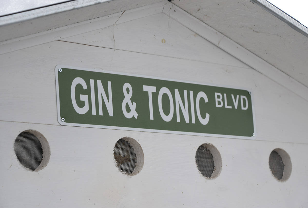Gin and Tonic have a special street sign on their shelter. (Martha Wickett-Salmon Arm Observer)