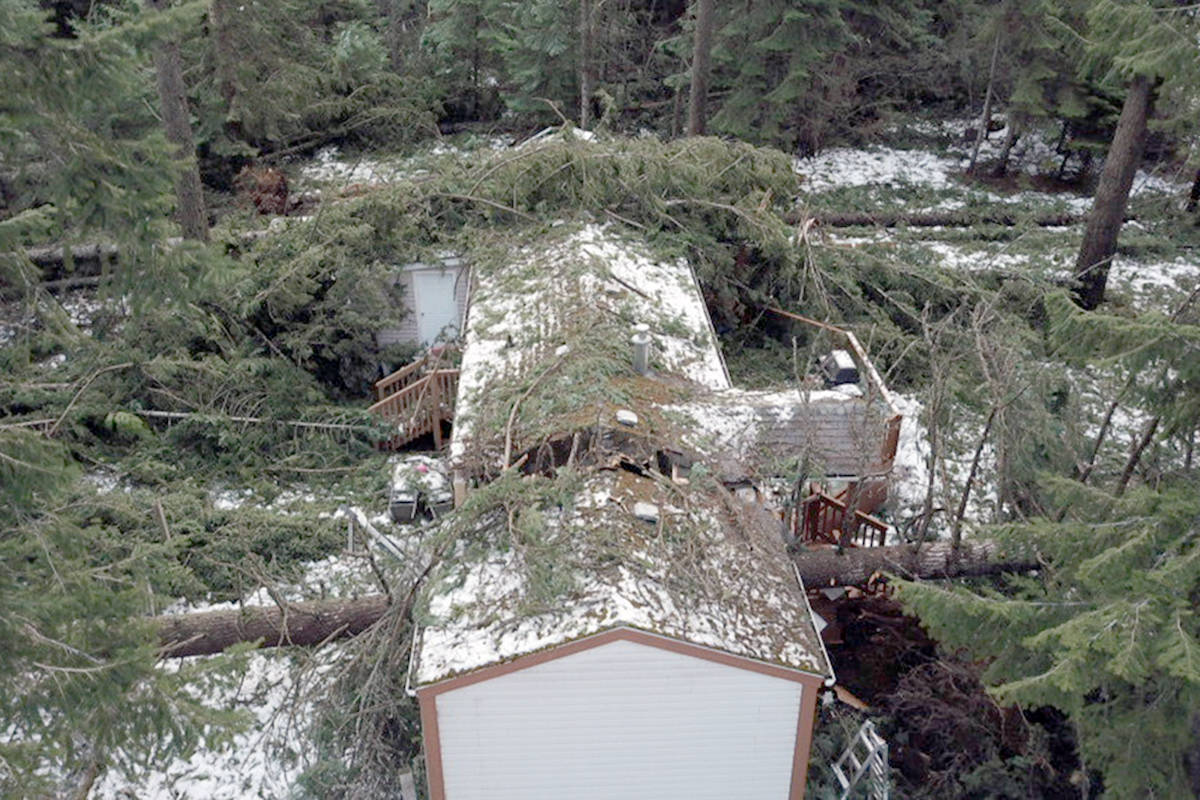 Trees destroyed a Shoreacres home during a wind storm Jan. 13, 2021. Photo: Submitted