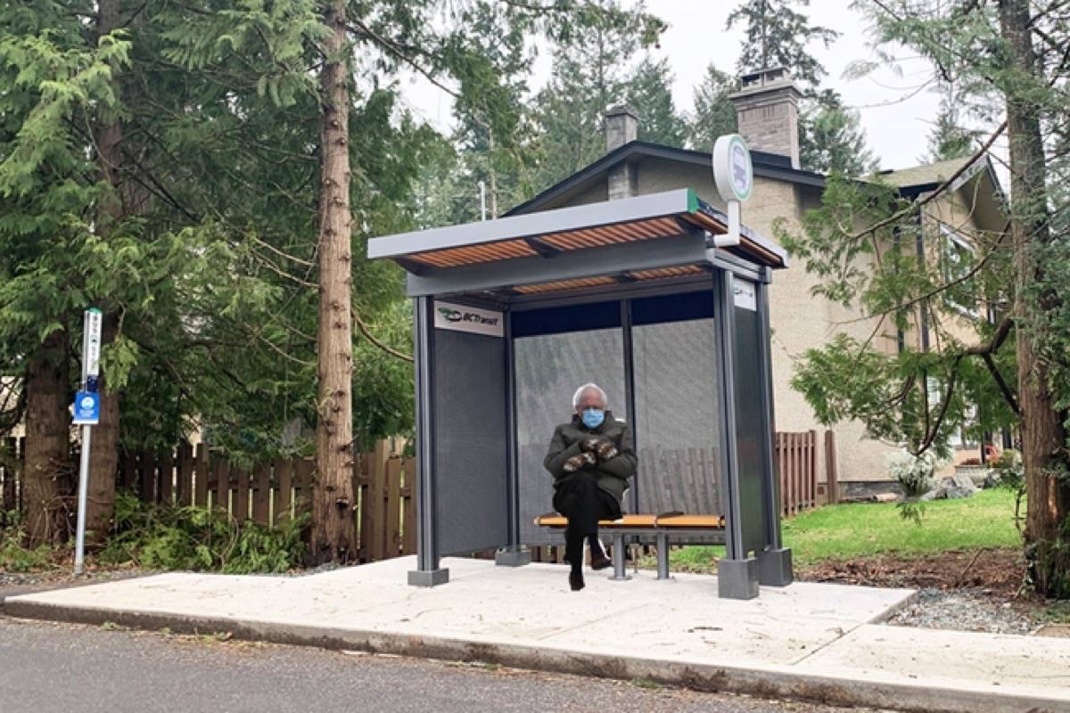 "Central Saanich Coun. Zeb King shared a photo of U.S. Senator Bernie Sanders ""waiting for fare-free transit"" at one of the new bus shelters in the District of Central Saanich. (Zeb King/Twitter)"