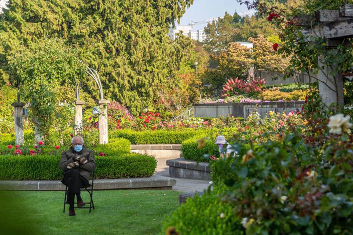 U.S. Senator Bernie Sanders stops to smell the roses at the University of British Columbia. (Arash Farsaneh/Twitter)